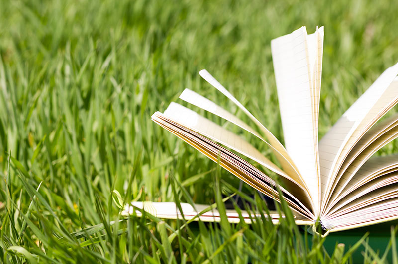 open book lying in grass