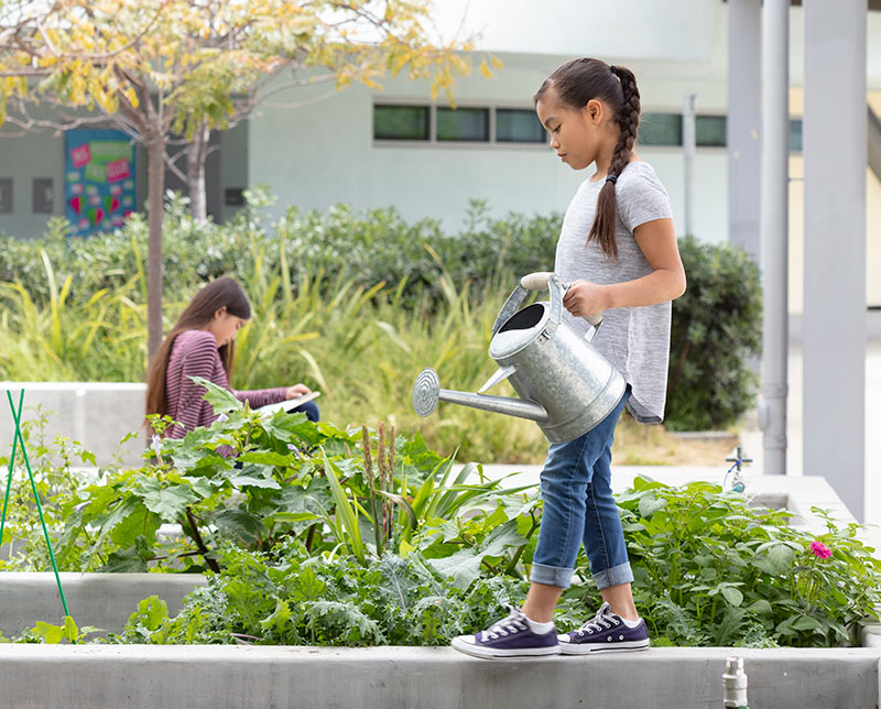 An outdoor garden at Playa Vista Elementary in Los Angeles, link to project page